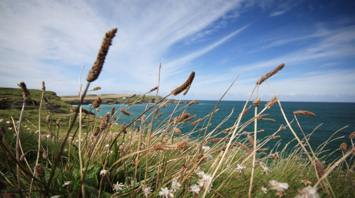 Cornish Holiday Homes From Harbour Holidays